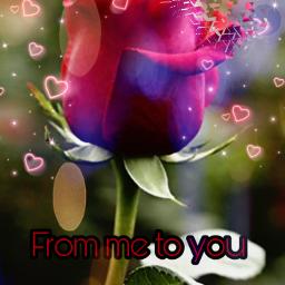 freetoedit rosesticker