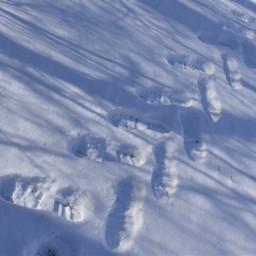 bootsprints snow