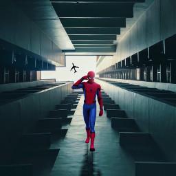 freetoedit spiderman spider spidermanedit marvel