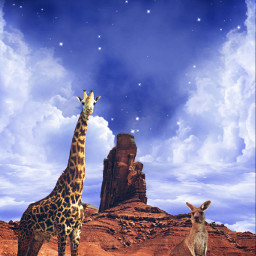 freetoedit australia kangoroo giraffe moon