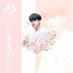 randomkpoploverminicontest ikonic chanwooikon chanwoo pink freetoedit