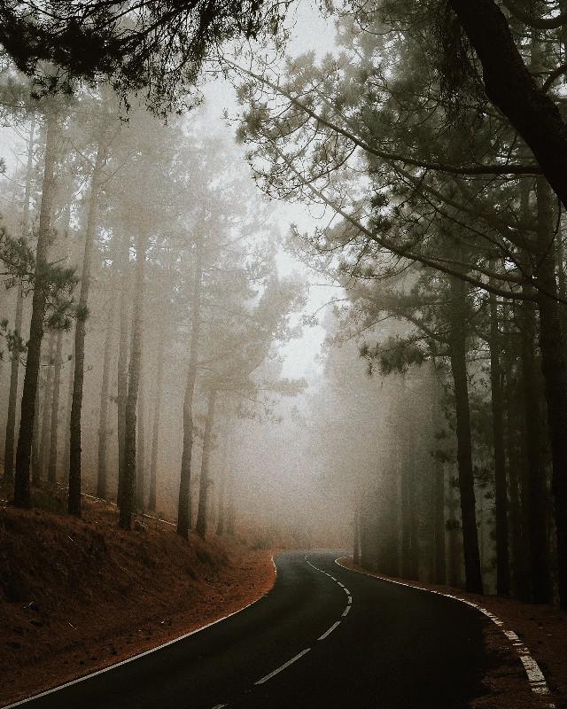 Roads to wild. — follow me on Instagram: isr4el