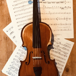 pcmusicalinstruments musicalinstruments musicalinstrument
