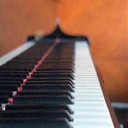 musicalinstrument piano freetoedit pcmusicalinstruments musicalinstruments