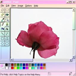 ircpinkrose pinkrose freetoedit