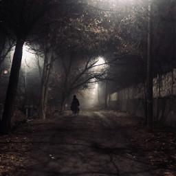 freetoedit night fog tashkent