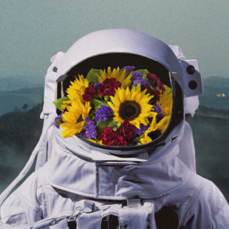 astronaut girlcreates flowers sunflower green freetoedit