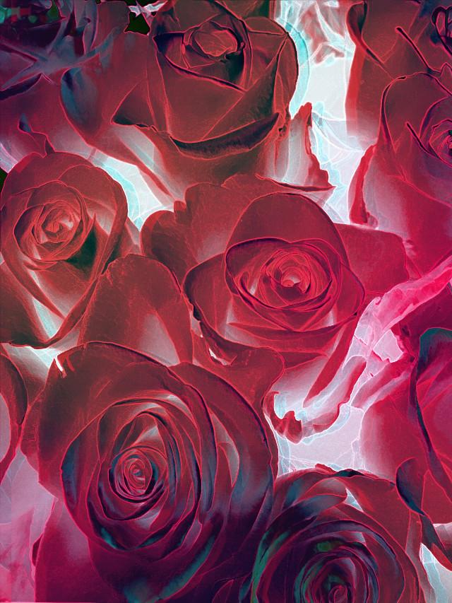 #freetoedit #fantasy #flowers
