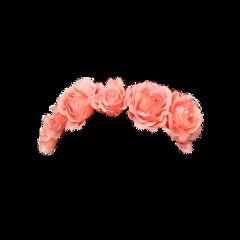 венок crown flower flowers wreath freetoedit