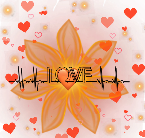 #amor #love #flor #flower #luz #light #coracao #heart
