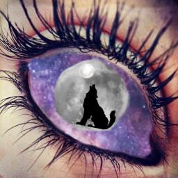 eye wolf galaxy moon pretty freetoedit