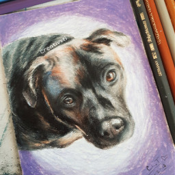art drawing gift dog birthday