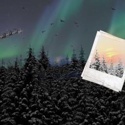 ircwinterforest winterforest winter santa snow freetoedit