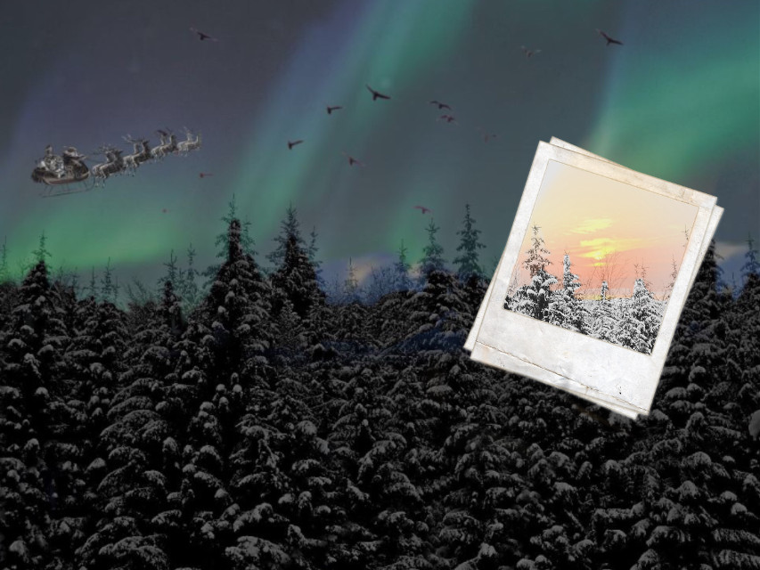 #winter #santa #snow #polaroid #forest #sunset #skylight