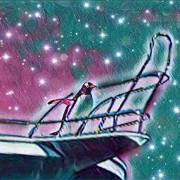 freetoedit pinguins galaxy night art ircflippinout