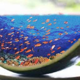 freetoedit doubleexposure cucumber aquarium aquarius
