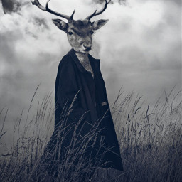 freetoedit echeadswap headswap deerhead deer