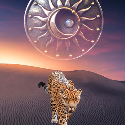 freetoedit desert leopard sunset nightsky