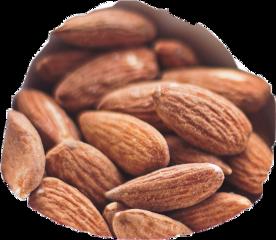 scnuts nuts freetoedit