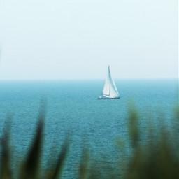 freetoedit seaview nature sailingboat horizon