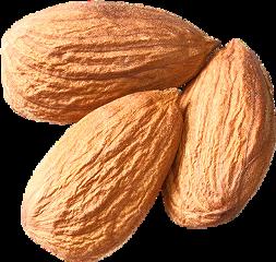 freetoedit scnuts nuts