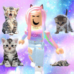 kittysquad kitty sqaud freetoedit