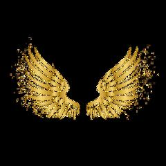 wings angel gold glitter freetoedit