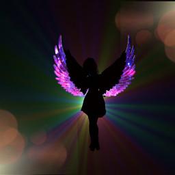 galexy wings angle blackframe