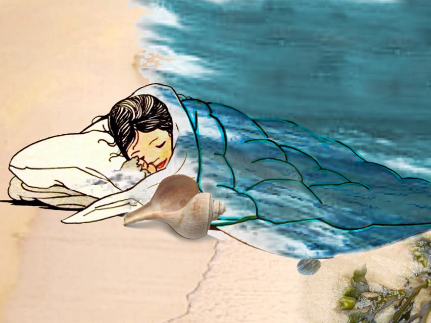 #shore #beach #nap #shell
