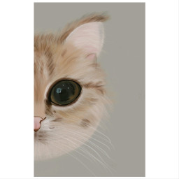 cat kitty draw drawing dailyart