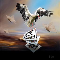 freetoedit playingcards creative artistic work