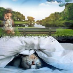 freetoedit cat pet girl nature grass dream picsart challenge summer catnap