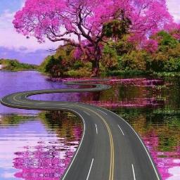 freetoedit srcspringroadtrip springroadtrip road