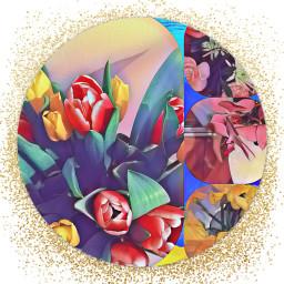 flower effects fun colouful freetoedit