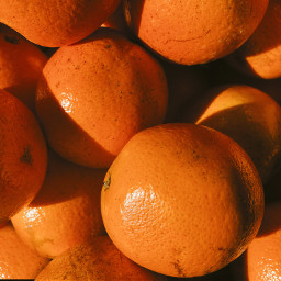 freetoedit oranges orange fruit backgrounds