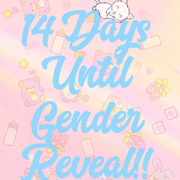 genderreveal countdown happiness mommytobe freetoedit