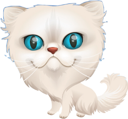cat momio freetoedit
