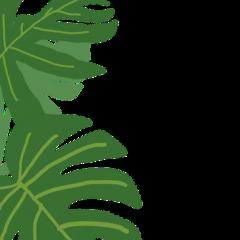 leaf leafyedit freetoedit