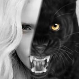 srcpanthers panthers freetoedit pantera blackandwhite