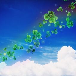 freetoedit stpatricksday clovers green bluesky