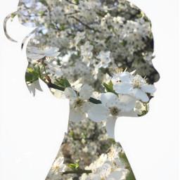 freetoedit flowers challenge picsart edit remixit nature people girl woman floral white green magic magical picsartchallenge art photography irchersilhouette hersilhouette