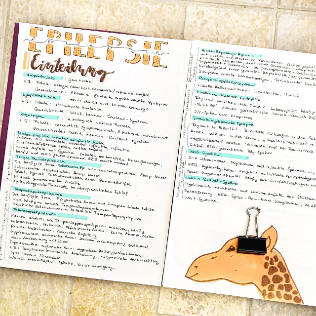 🦒 insta: @p.teres #giraffe #doodle #drawing #notes #interesting #freetoedit #flatlay