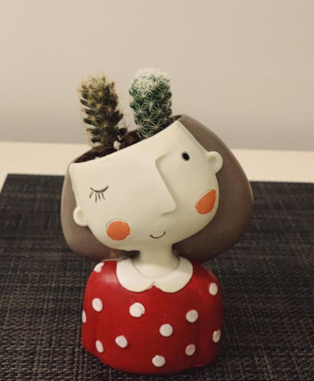 #cactus #creative