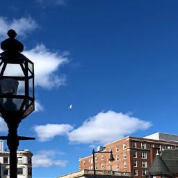 freetoedit lookup lamp seagull city