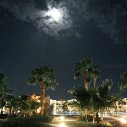 photostory nature night moon sky freetoedit
