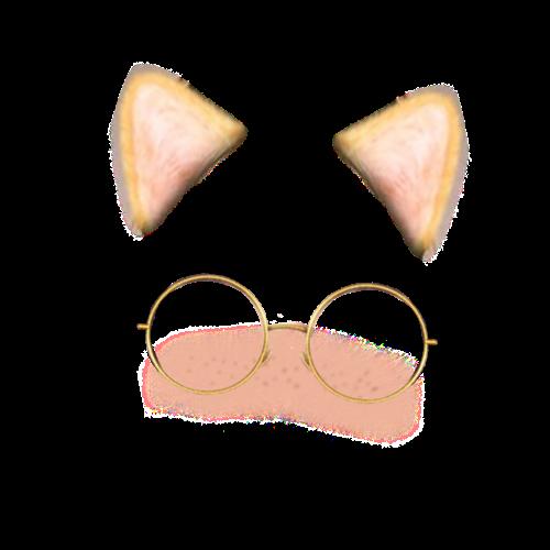 Snapchat Filters Cat Glasses Snapchatfilter Freetoedit