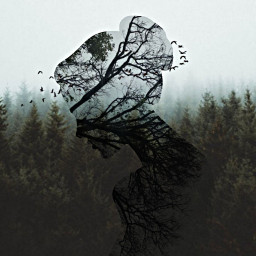 freetoedit doubleexposure surreal creative forest