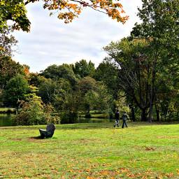 pcfields fields freetoedit nature walk