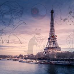 freetoedit paris france miraculousladybug miraculous ladybug chatnoir marinette adrien love picsart sky evening edit people cat kiss city cityoflove water
