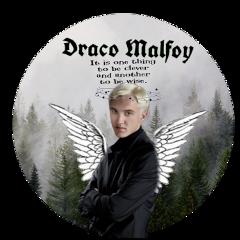 harrypotter dracomalfoy freetoedit